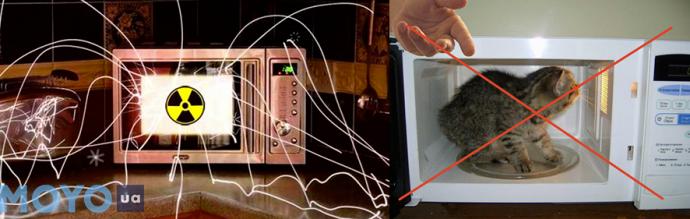Как микроволновая печь влияет на человека