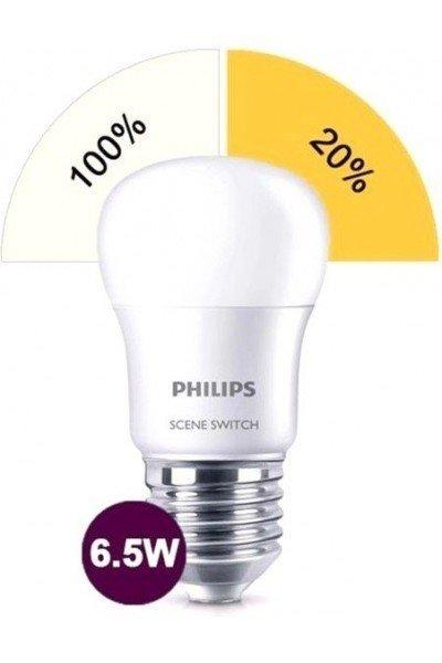 Лампа светодиодная Philips Scene Switch E27 2S 6.5-60W 2S 6500K 230V P45 (929001209007) фото 2