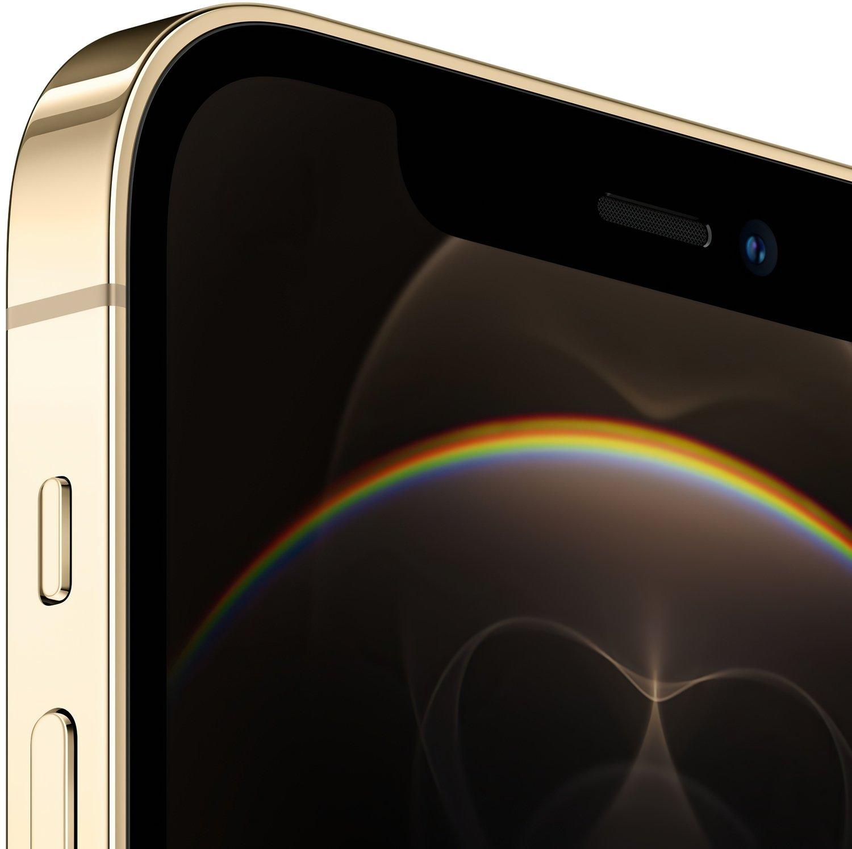 Смартфон Apple iPhone 12 Pro 256GB Gold (MGMR3) фото 2