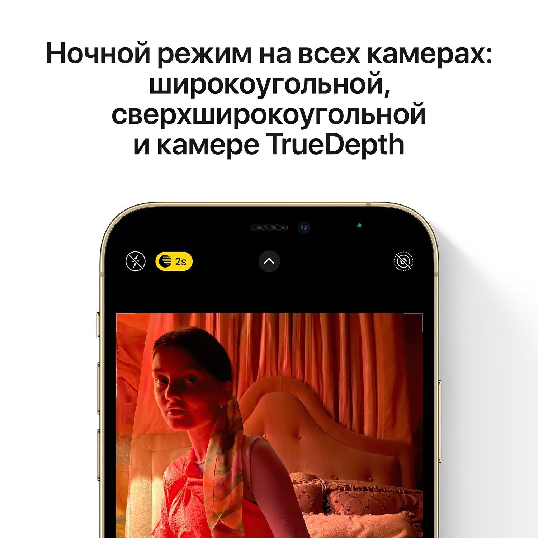 Смартфон Apple iPhone 12 Pro Max 256GB Gold (MGDE3) фото 8