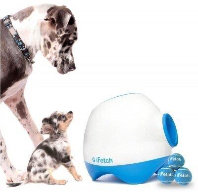 iFetch: для собак, которые любят играть с мячиками