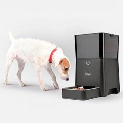 Умная кормушка для кошек и собак Petnet SmartFeeder: животные всегда сыты!
