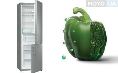 Рейтинг лучших холодильников Gorenje – 10 моделей для выбора
