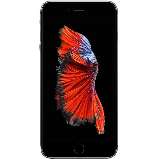 ≡ iPhone 6s 64GB Space Gray - купити Айфон 6с в Києві  6547d543811fe