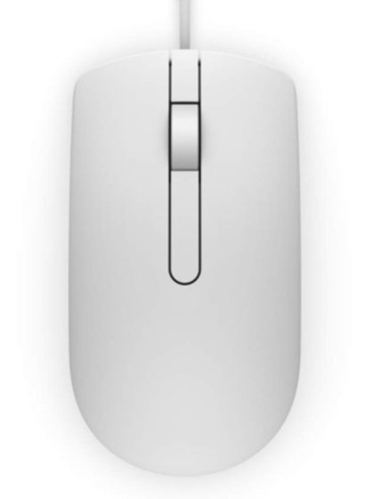Миша Dell Optical MS116 White (570-AAIP) фото