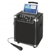 Акустическая система Trust Fiesta Pro Wireless (6303835)