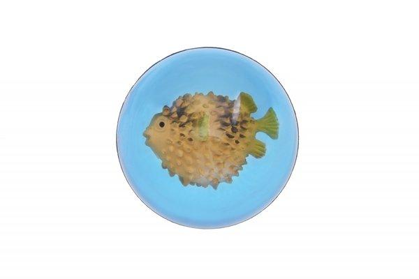 Купить Мячик-попрыгун goki Рыба-шар (16002G-5)