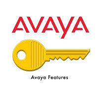 Ключ-опция Avaya RV SW REM+UPG 1YPP 55111-00942 (239506)