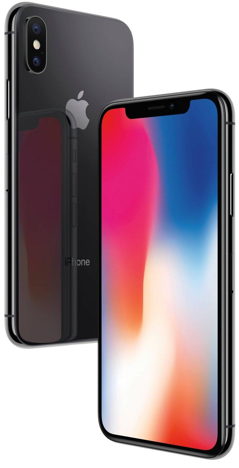 Смартфон Apple iPhone X 64GB (Space Gray) фото 1