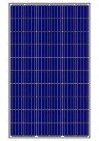 Фотоэлектрическая панель Amerisolar AS-6P30-275W, 1000V, поликристаллическая