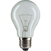 Лампа накаливания Philips E27 75W 230V A55 CL 1CT/12X10 Stan (926000004013)