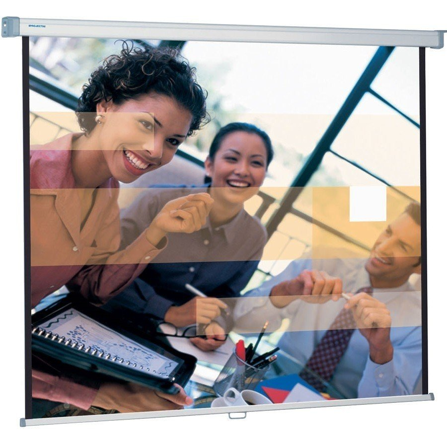 Экран Projecta SlimScreen 180x180см, MW (10200063) фото