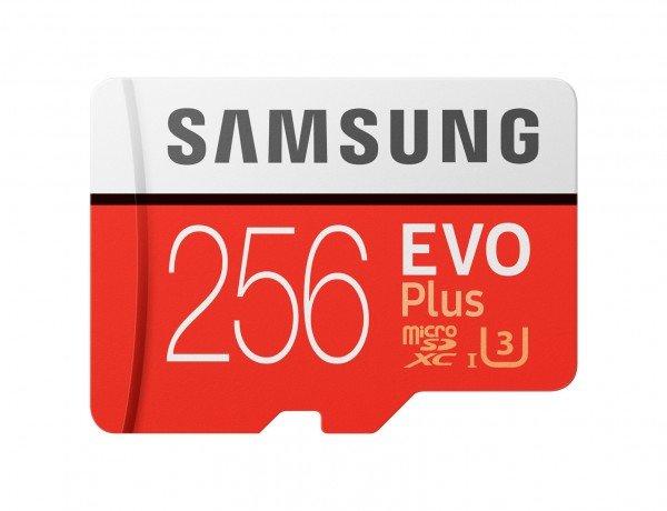 Купить Карта памяти Samsung microSDXC 256GB Class 10 UHS-I U3 Evo Plus W60MB/s + SD-адаптер