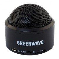 Портативная акустика Greenwave PS-300M Black