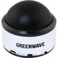 Портативная акустика Greenwave PS-300M Black Silver