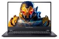 Ноутбук DREAM MACHINES RS2080Q-17 (RS2080Q-17UA28)