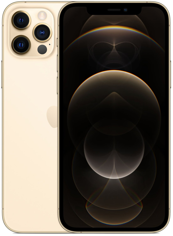 Смартфон Apple iPhone 12 Pro 256GB Gold (MGMR3) фото 1