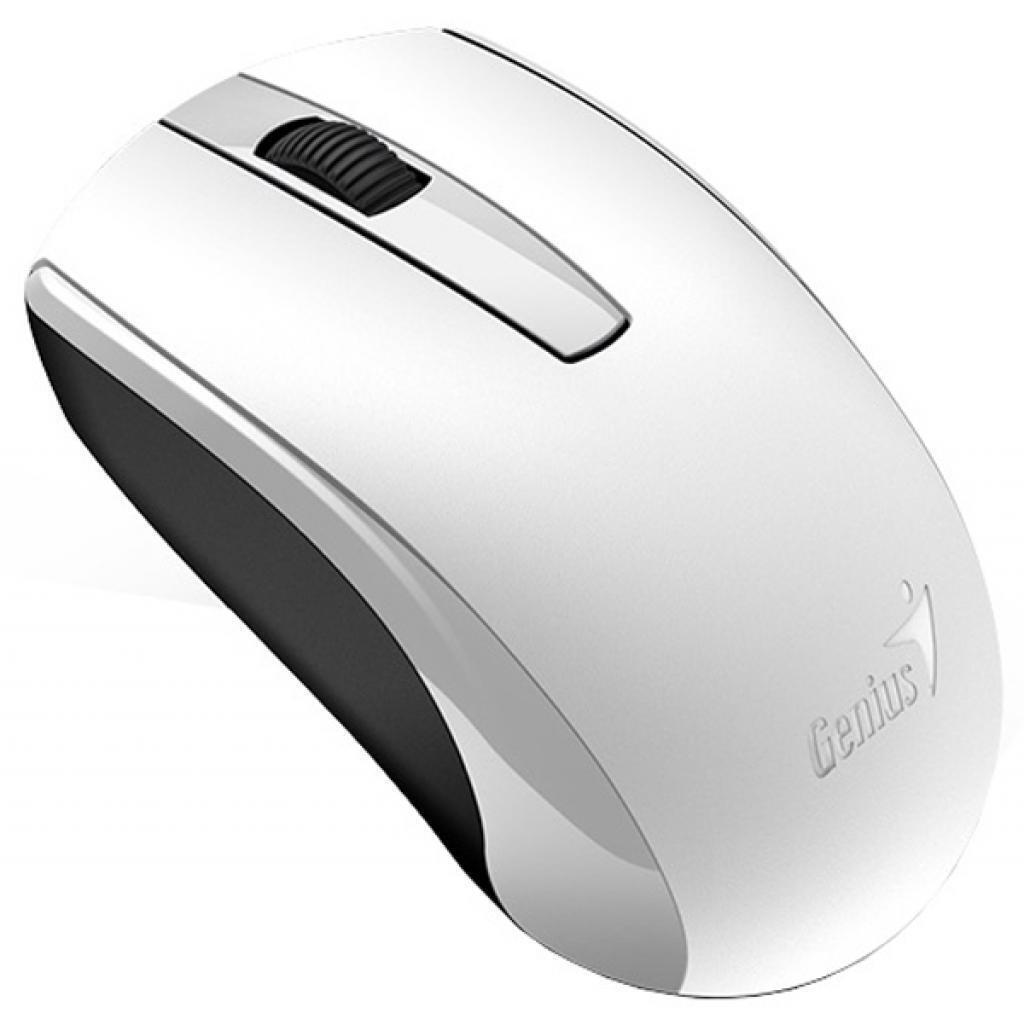 Миша Genius ECO-8100 WL White (31030010409) фото