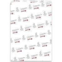 Бумага Xerox COLOTECH + SILK (250) SR250л (003R90369)
