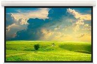 Моторизованный экран Projecta Elpro Concept 228x360cm MW (10101576)