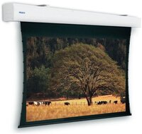 Моторизованный экран Projecta Tensioned Elpro Large Electrol VA 248x440cm (10103834)