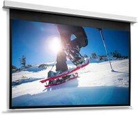 Моторизированный экран Projecta DescenderPro 184x320 см, MW (10104769)